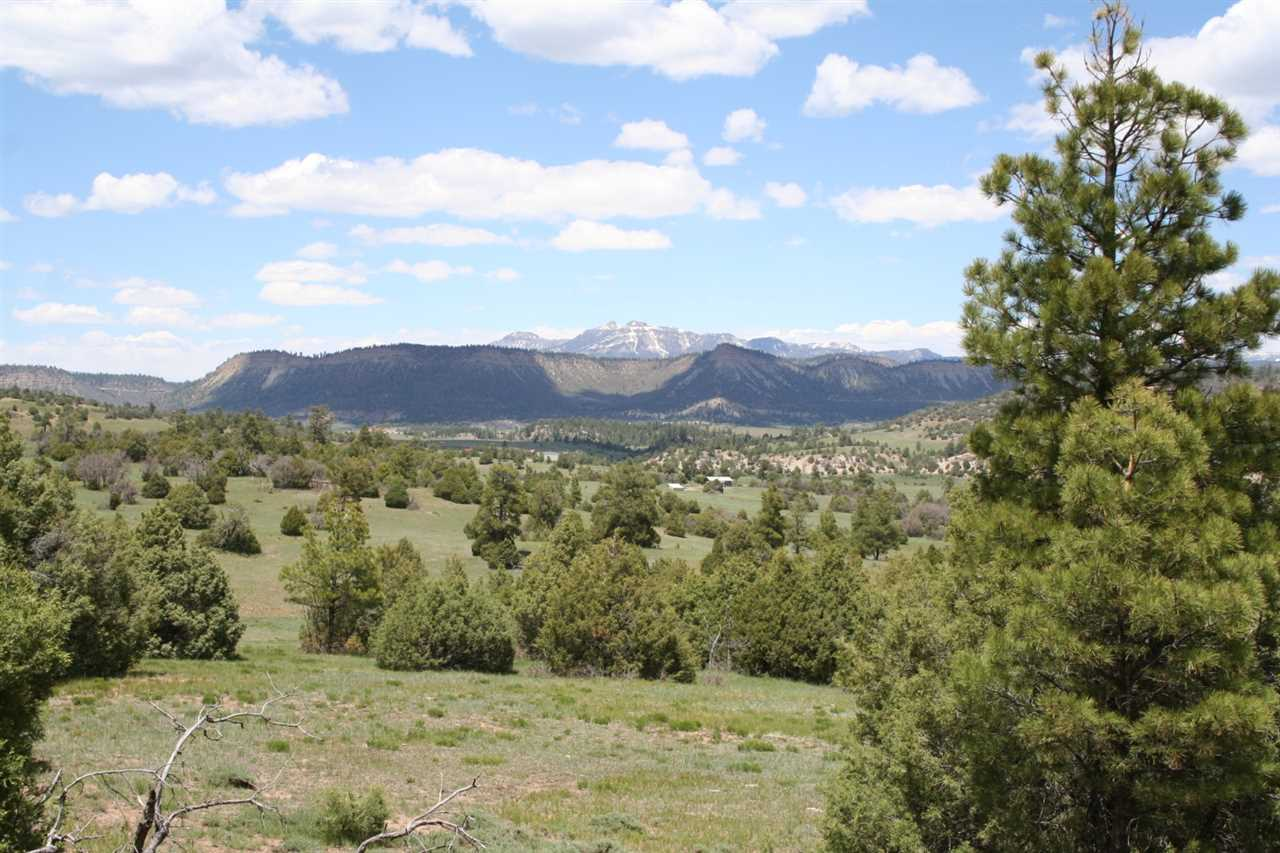 Willow Way Road  Chama  Nm  87520 Mls  201702572